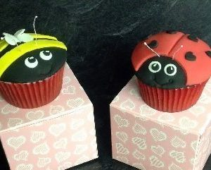 Childrens Cupcakes Class - Ladybirds & Bees