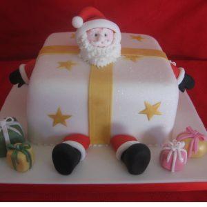 Christmas Cakes - Santa in parcel